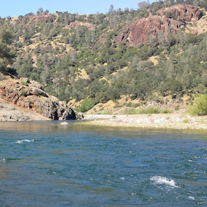 Fly Fishing Traditions Tailwater Tactics